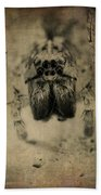 The Spider Series Xiii Beach Towel