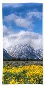 The Teton Mountain Range In The Spring Grand Teton National Park Beach Towel