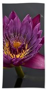 The Tiny Dragonfly On A Water Lily Beach Towel