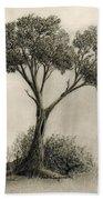 The Tree Quietly Stood Alone Beach Sheet