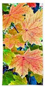 The Turning Leaves Beach Towel
