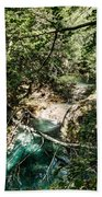 The Turquoise Waters Of The Forest River No2 Beach Towel
