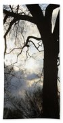 The Washington Monument Lost In The Trees Beach Towel