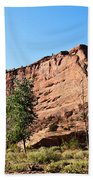 The Wedge Canyon Dechelly Beach Towel