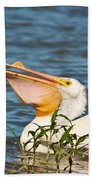 The White Pelican Beach Towel