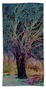 10994 The Widow Tree Beach Towel