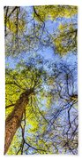 The Wild Forest Beach Towel