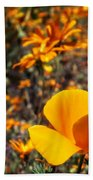 The Wildflowers Are Here And Spring Has Arrived Beach Towel