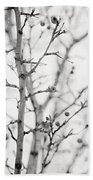 The Winter Pear Tree In Black And White Beach Towel