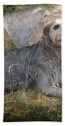 The Wolfhound  Beach Towel by Fran J Scott