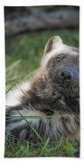 The Wolverine Skunk Bear Happy Face Beach Sheet