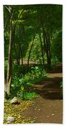 The Wooded Path... Beach Towel