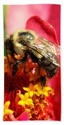 The Zinnia And The Bee Beach Towel