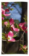 Them Cheery Little Dogwoods Beach Towel