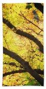 Then Autumn Arrives 03 Beach Towel