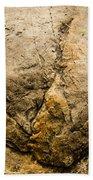 Theropod Dinosaur Footprint Beach Towel