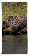 Thirsty Grizzlies  #3418 Beach Towel