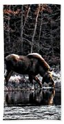 Thirsty Moose Impressionistic Digital Painting Beach Towel