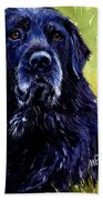 This Is Fred Beach Towel