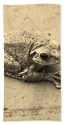 This Old Frog Beach Towel