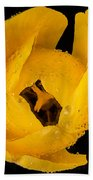 This Yellow Tulip Beach Sheet