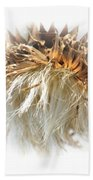 Thistle Abstract 14-1 Beach Towel