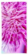 Thistle Beauty Beach Towel