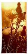 Thistle Edge Glow Beach Towel