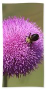 Thistle And A Bee Beach Towel