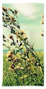 Thistle On The Beach  Beach Towel