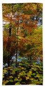 Thoreau's Pride Beach Towel