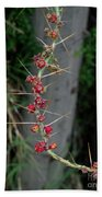 Thorns And Blooms Beach Towel