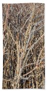 Thorny Wall Beach Towel