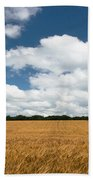Thoughts Of A Wheatfield Beach Towel