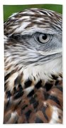 The Threat Of A Predator Hawk Beach Towel