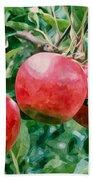 Three Apples On Tree Beach Towel