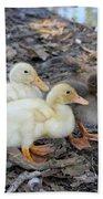 Three Baby Ducks Beach Towel