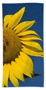 Three Bees And A Sunflower Beach Towel by Adam Romanowicz