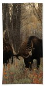 Three Bull Moose Sparring Beach Towel