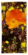 Three California Poppies Among Goldfields In Antelope Valley California Poppy Reserve Beach Towel