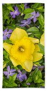 Three Daffodils In Blooming Periwinkle Beach Towel