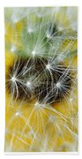 Three Dandelions In A Line Beach Towel