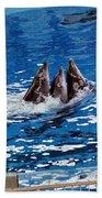Three Dolphins Beach Towel