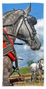 Three Horses Beach Towel