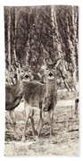 Three In The Field Beach Towel