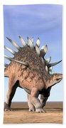 Three Kentrosaurus Dinosaurs Standing Beach Towel by Elena Duvernay