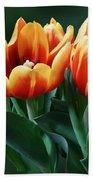 Three Orange And Red Tulips Beach Towel