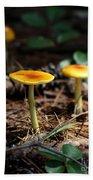 Three Orange Mushrooms Beach Towel