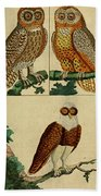 Three Owls Beach Towel