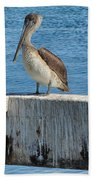Three Pelicans Beach Towel